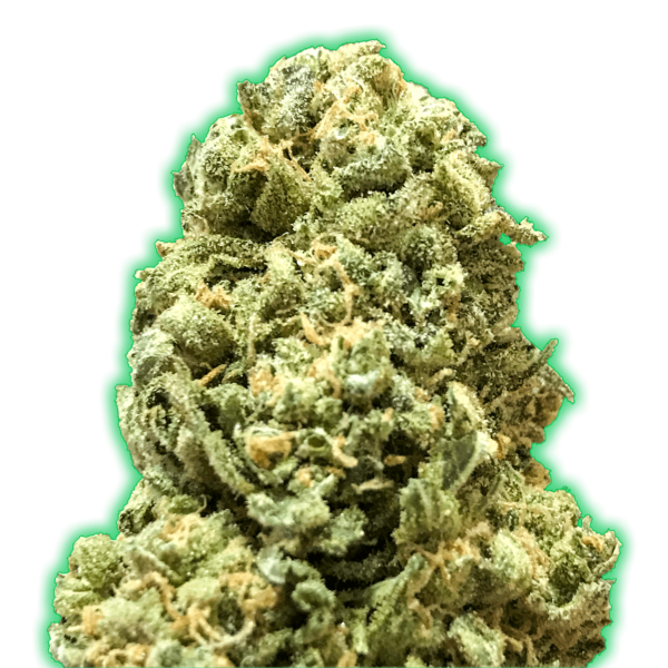 Girl Scout Cookies Monster